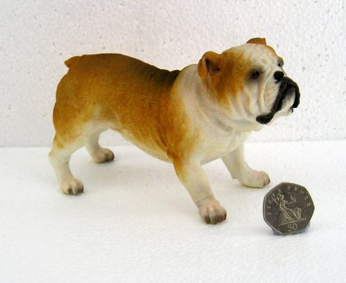 Best Of Breed by Naturecraft – Bulldog Red / White Dog – Standing