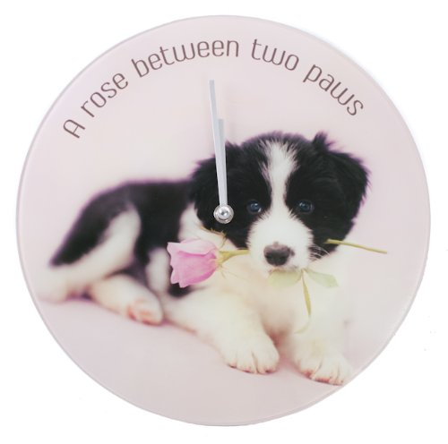 Pawz by Naturecraft Border Collie with Rose Glass Wall Clock