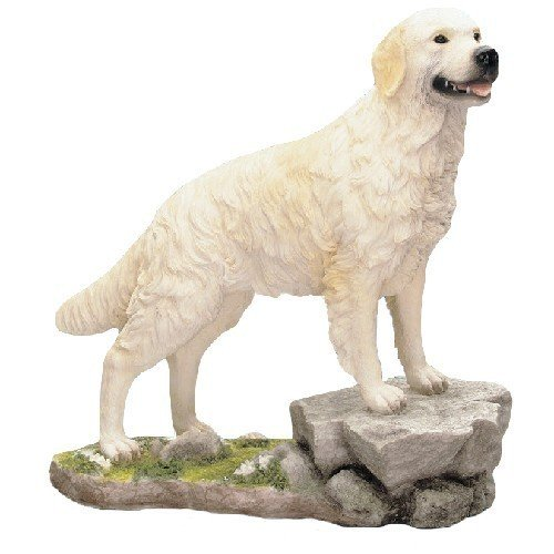 Best Of Breed by Naturecraft – Large Golden Retriever Dog Standing On Rock