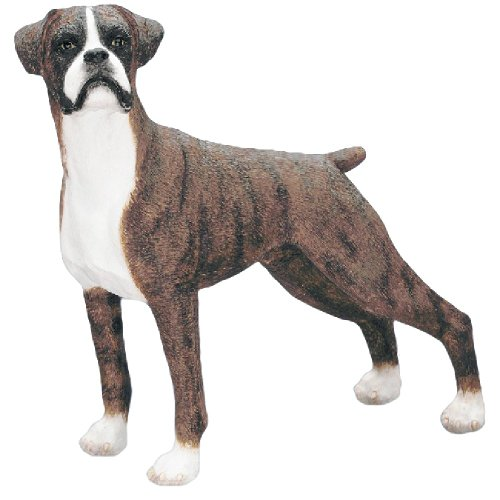 Best Of Breed by Naturecraft – Boxer Brindle White Colour Standing Dog