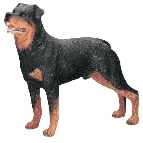 Best Of Breed by Naturecraft – Rottweiler Dog – Standing