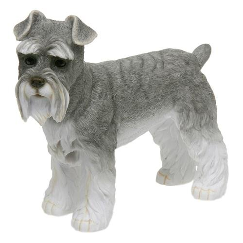 Standing SCHNAUZER Dog Ornament – Best Breed Range Of Collectable Dogs By Leonardo – Ideal Gift For a Dog Owner