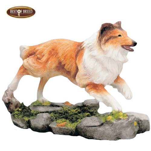 Best Of Breed by Naturecraft – Shetland Sheepdog Running Ornament Sable Colour
