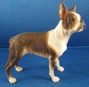 Best Of Breed Dogs – BOSTON TERRIER – Brindle & White