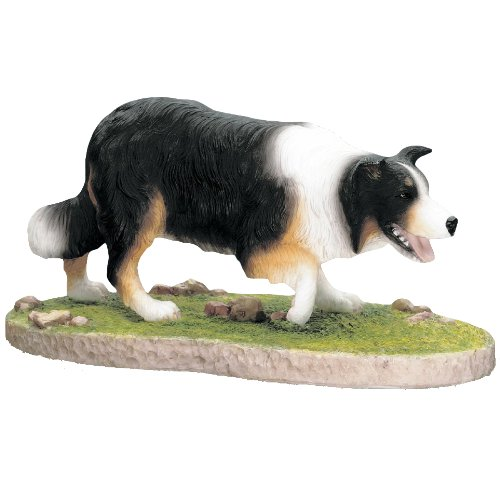 Best Of Breed – Dogs – Border Collie Stalking – Tri